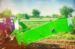 Trattore nel campo con un aratro per le patate di scavatura che raccolgono, lavoro stagionale, ortaggi freschi, agro-cultura, col Fotografia Stock