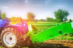 Trattore nel campo con un aratro per le patate di scavatura che raccolgono, lavoro stagionale, ortaggi freschi, agro-cultura, col Fotografia Stock Libera da Diritti