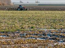 Trattore nel campo in ploder olandese, Olanda Immagini Stock Libere da Diritti