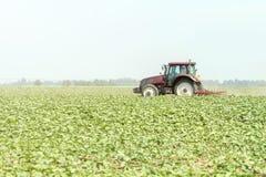 Trattore nel campo verde Macchina di agricoltura Immagini Stock Libere da Diritti