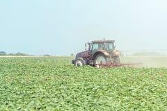 Trattore nel campo verde Macchina di agricoltura Immagine Stock