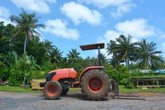 Trattore rosso su un campo nel cuoco Islands di Rarotonga Immagine Stock