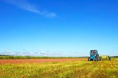 Trattore su un campo dell'agricoltore Fotografie Stock