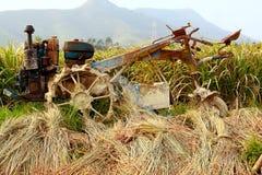 Trattore sull'azienda agricola del riso Immagine Stock