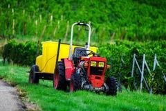 Trattore in vigne mentre vendange nell'Alsazia Immagine Stock Libera da Diritti