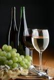 Traube, Käse und Wein Lizenzfreies Stockbild