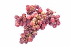 Traube, verwelkte Trauben lokalisiert auf weißem Hintergrund Stockfotos