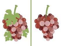 traube Weintrauben Satz unterschiedliche Traubenvielzahl Lizenzfreie Abbildung
