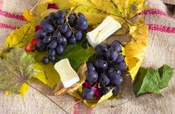 Trauben, Blätter und Käse Stockfotografie