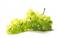 Trauben in einem weißen Hintergrund Stockfoto