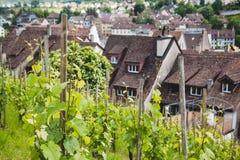 Trauben fangen in der Schweizer Stadt Schaffhausen auf Lizenzfreie Stockbilder