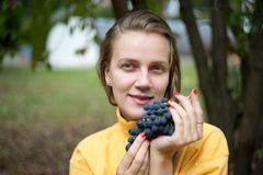 Trauben im Garten Stockbild