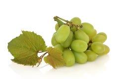 Trauben mit Blättern Stockbild