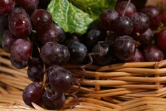 Trauben mit Blatt und Wein lizenzfreie stockfotografie