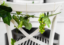 Trauben mit grünen Blättern Stockfotografie