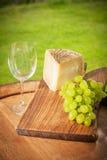 Trauben mit Käse und Wein Stockbild