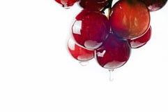Trauben mit Traubenkornöl Stockfoto