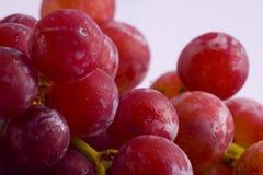 Trauben rot und nahes hohes stockbild
