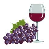 Trauben und ein Weinglas lizenzfreie abbildung