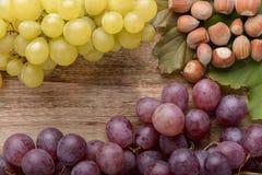 Trauben und Haselnuss Stockbilder