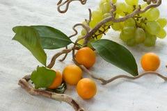 Trauben und orange japanische Orangen Lizenzfreie Stockbilder