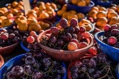 Trauben und Orangen Stockbild