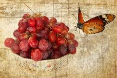 Trauben und Schmetterling Retro- Art Lizenzfreies Stockfoto