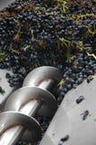 Traubenernte Traubenpresse für Weinproduktion Lizenzfreie Stockbilder