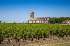 Traubenfeld und alte Kirche hinter nahem Bordeaux Stockfotos