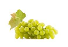 Traubenfrüchte Stockfotografie