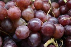 Traubenfrucht ist frisch lizenzfreies stockfoto