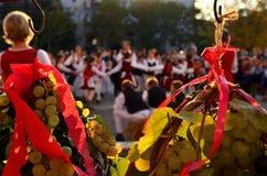 Traubenkränze auf Erntefest Stockfoto