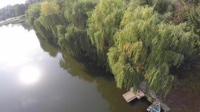 Trauerweidebäume nachgedacht über einen Fluss Brummenvideo stock footage