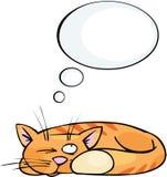 Traum der Katze Stockfotos