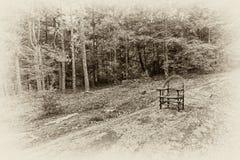 Traumblick eines Stuhls im Wald stockbilder