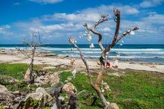 Trauminsel, Strand von Isla Mujeres, Mexiko Lizenzfreie Stockbilder