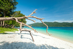 Trauminsel und Türkis färben Meer, Adang-Raweeinsel, Tha Stockfotografie