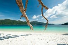 Trauminsel und Türkis färben Meer, Adang-Raweeinsel, Tha Stockfoto