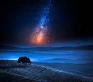 Traumland in Toskana mit Baum auf Feld und Milchstraße Stockbild
