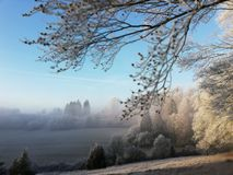 Dreamland scape in winter stock photo