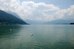 Traunsee Fotos de Stock Royalty Free