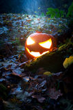 Traurig blickende Halloween-Laterne im Wald Stockfotos