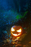 Traurig blickende Halloween-Laterne im Wald Lizenzfreies Stockfoto