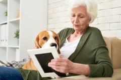 Traurige Frau mit dem Hund, der an Erblasser denkt Stockfoto