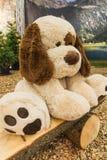 Traurige große angefüllte weiße Hundepuppe auf einer Holzbank stockfotografie