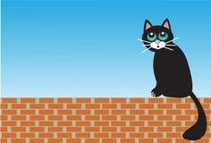 Traurige Katze, die auf Ziegelsteinen sitzt Lizenzfreie Stockbilder