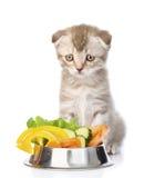 Traurige Katze, die mit einer Schüssel Gemüse sitzt Lokalisiert auf Weiß Stockfotos