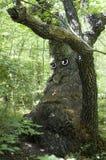 Trauriger alter Baum Lizenzfreie Stockfotografie