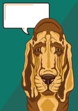 Trauriger Bluthund mit einer Spracheblase Lizenzfreies Stockbild