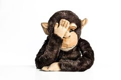 Trauriger, einsamer, besorgter Affe in der menschlichen Haltung Stockfotos